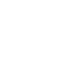 Party Palace Logo White